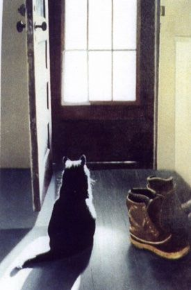 cat at door