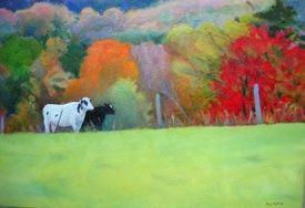 Ellen's Cows